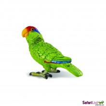 Grünwangenamazonen-Papagei