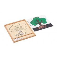 Colored botany puzzle activity set-plant
