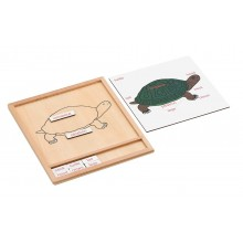 Colored animal puzzle activity set -turtle