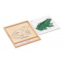 Colored animal puzzle activity set - frog
