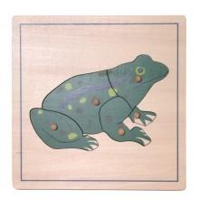 Tierpuzzle Frosch